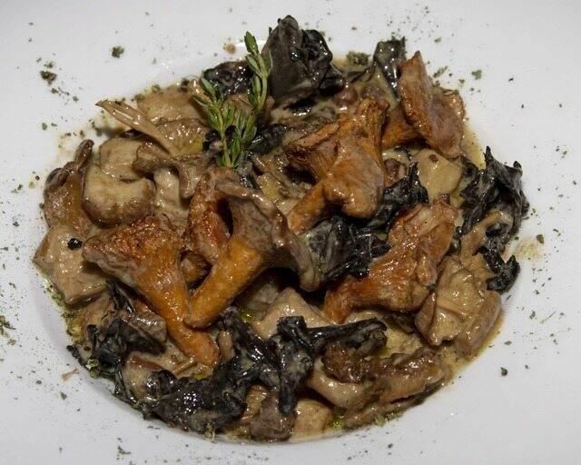 Salteado de setas silvestres con salsa de foieTosta Telero - Restaurante Telero Gandia