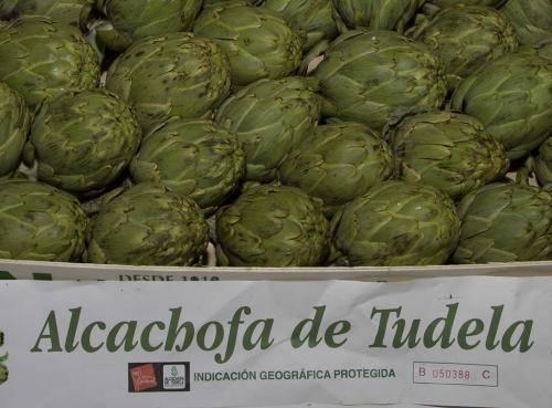 alcachofa-de-tudela-2013