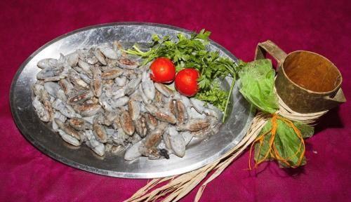 sepionet-del-mediterreo-el-20121031